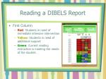 reading a dibels report