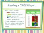 reading a dibels report33