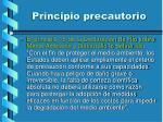 principio precautorio3