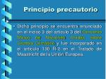 principio precautorio4