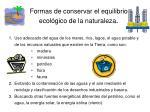 formas de conservar el equilibrio ecol gico de la naturaleza