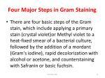four major steps in gram staining