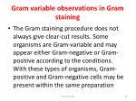 gram variable observations in gram staining