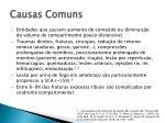 causas comuns