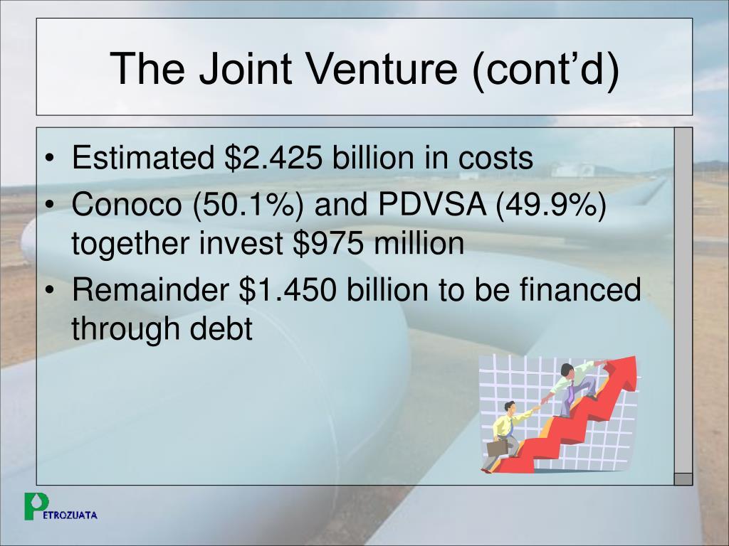 The Joint Venture (cont'd)