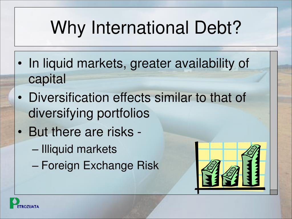 Why International Debt?