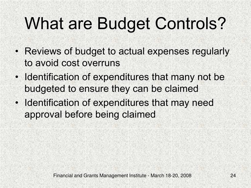 What are Budget Controls?