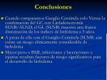 conclusiones19