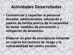actividades desarrolladas