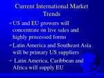 current international market trends24