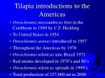 tilapia introductions to the americas