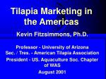 tilapia marketing in the americas