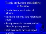 tilapia production and markets in mexico