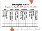strategies matrix organized by department prepared by universities