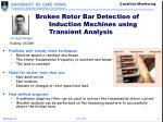 broken rotor bar detection of induction machines using transient analysis