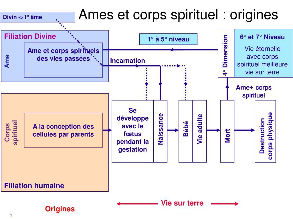 ames et corps spirituel origines l.