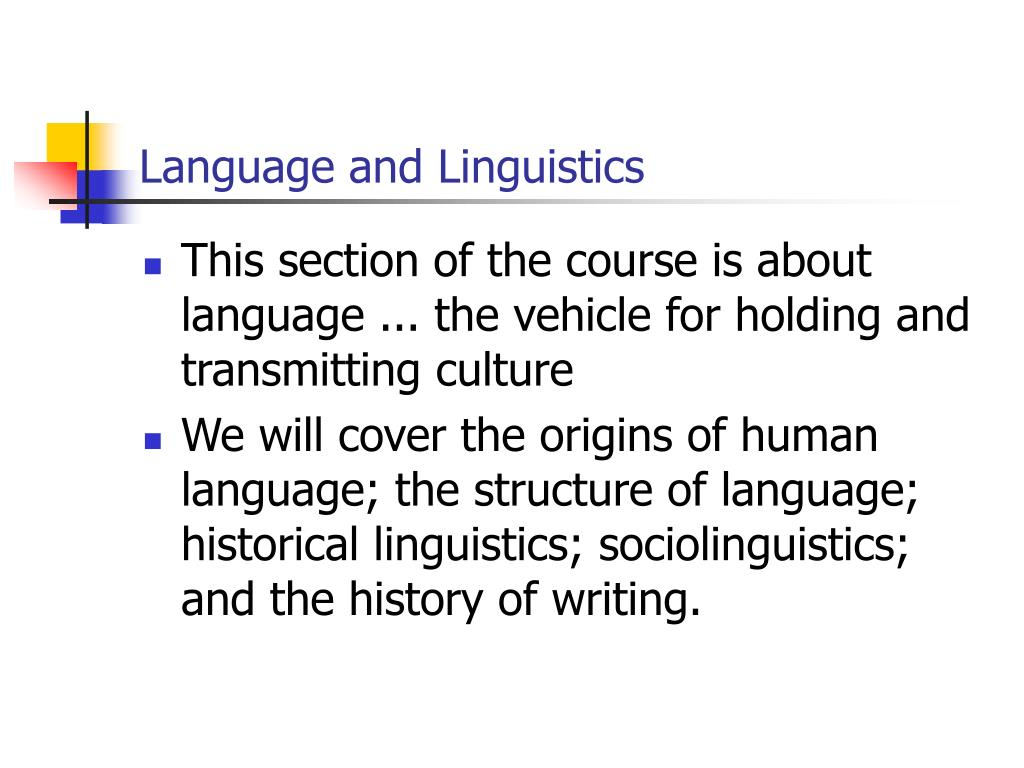 language and linguistics l.