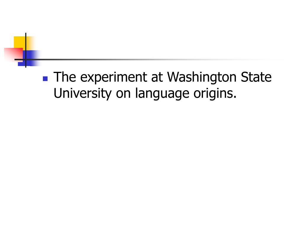 The experiment at Washington State University on language origins.
