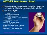 istore hardware vision