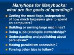 manyflops for manybucks what are the goals of spending
