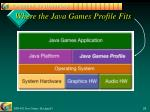 where the java games profile fits