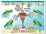 promotion and protection as two driving wheels