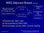 wsg adjuvant breast ara 03