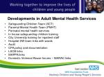 developments in adult mental health services