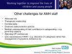 other challenges for amh staff