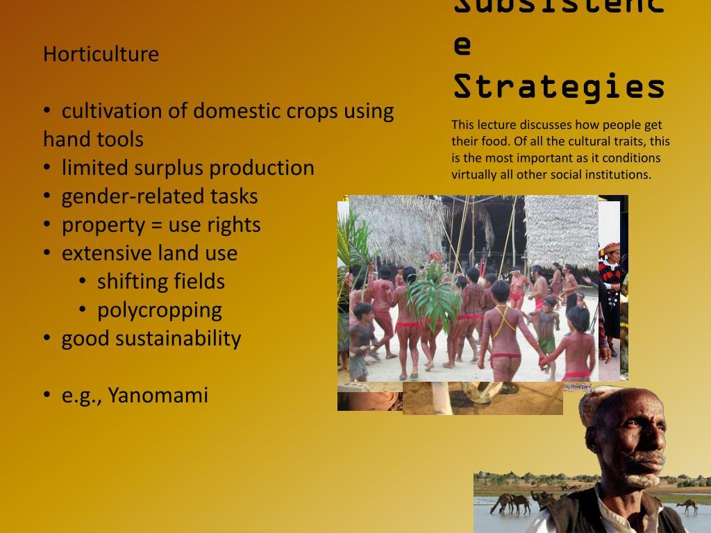subsistence strategies l.