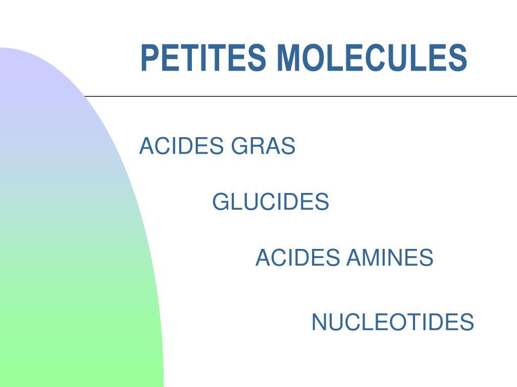 petites molecules l.