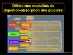 diff rentes modalit s de digestion absorption des glucides