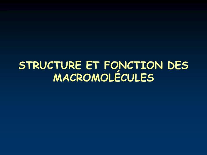 Structure et fonction des macromol cules