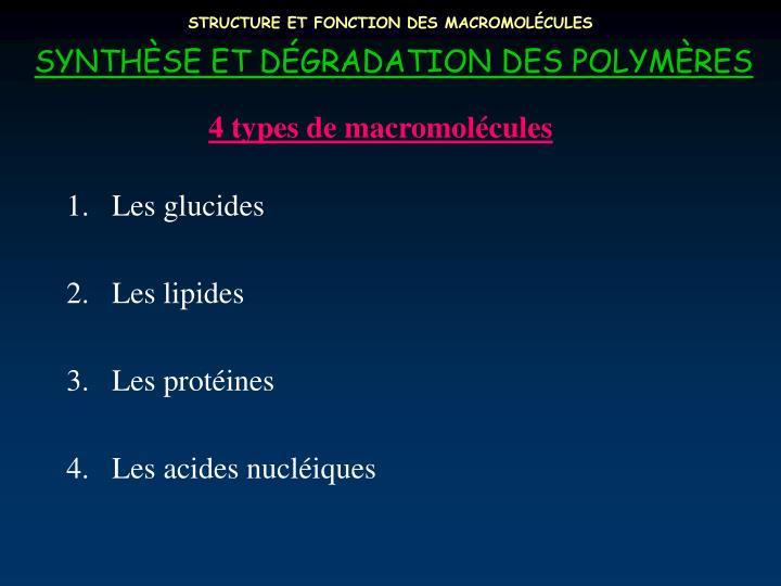 Structure et fonction des macromol cules3