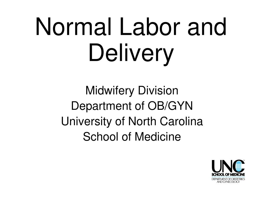 normal labor and delivery l.