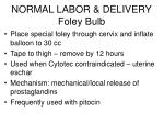 normal labor delivery foley bulb