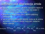 hoffmann ova degradacija amida