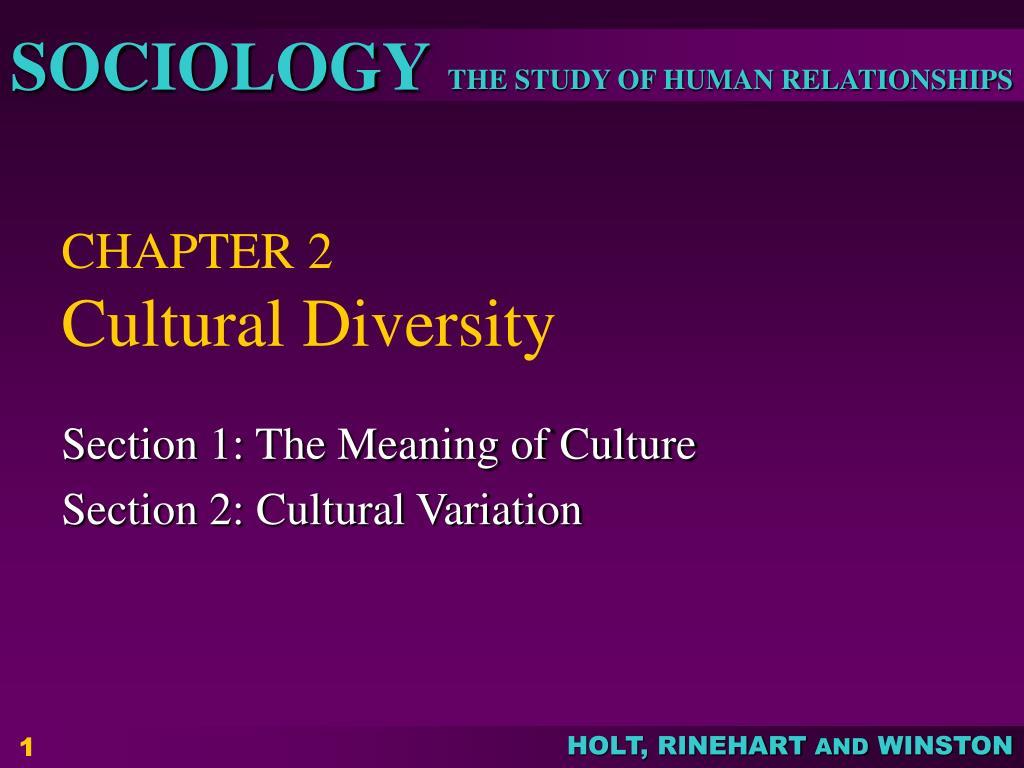 chapter 2 cultural diversity l.