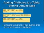 adding attributes to a table storing derived data