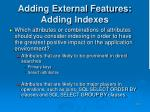 adding external features adding indexes