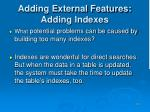 adding external features adding indexes23