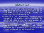 bioqu mica62