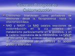sistemas biol gicos de oxidorreducci n59