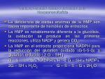 v a de la pentosa fosfato o derivaci n de la hexasomonofosfato87