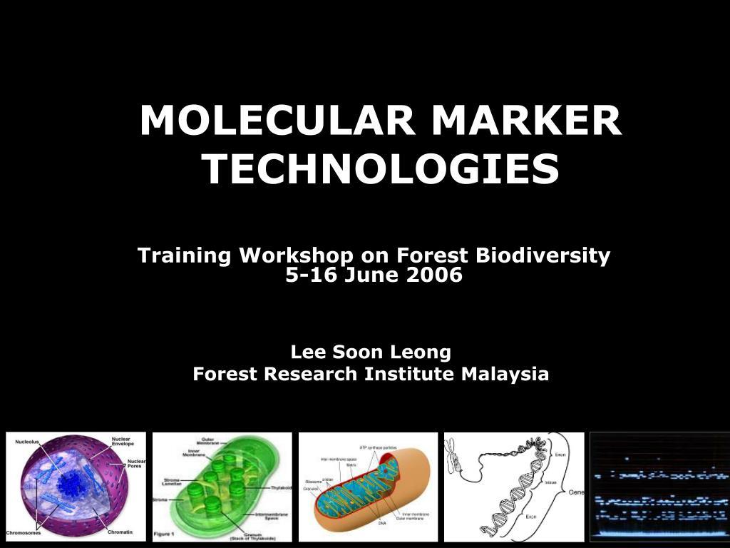molecular marker technologies l.