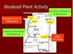 biodiesel plant activity