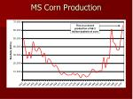 ms corn production
