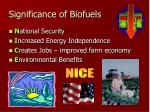 significance of biofuels