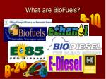 what are biofuels