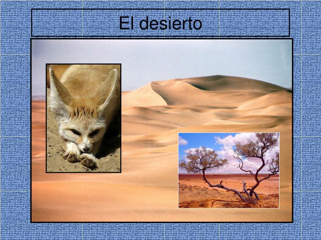el desierto l.